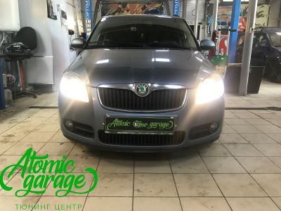 Skoda Fabia Mk2, замена линз на Bi-led Optima Professional - фото 1